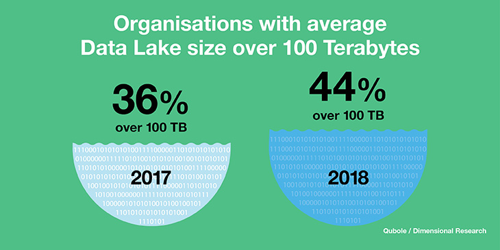 Organizations with average data lake size over 100 terabytes