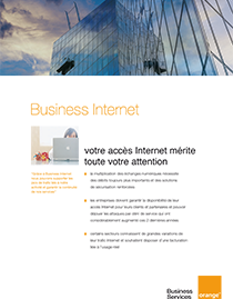 Brochure commerciale Business Internet