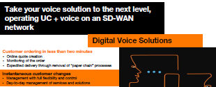 Digital Voice Solutions