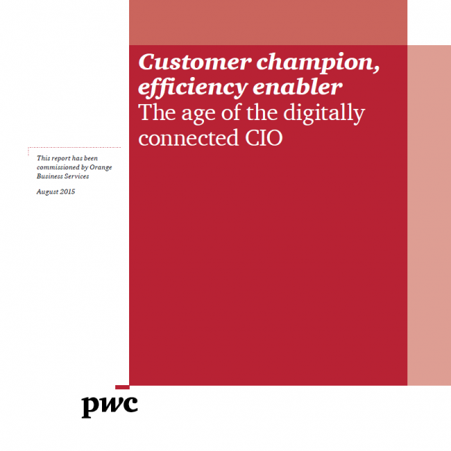 Customer Champion, Efficiency Enabler